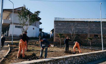 Vazhdon mbjellja e fidanëve të rinj në Njësitë Administrative të Korçës