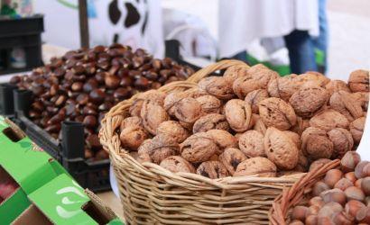 Panairi i Agrobiznesit 2014