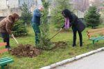 """Shtohet gjelbërimi rreth ambienteve të shkollës """"Faik Konica"""""""